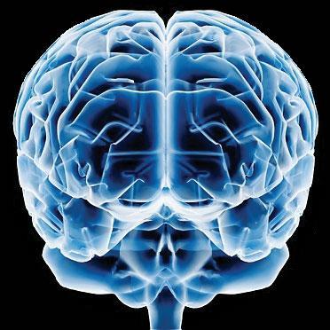 Usando e Melhorando seu Cérebro